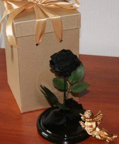 черная роза подарок на день рождения