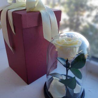 бежевая винтажная роза в колбе купить киев украина
