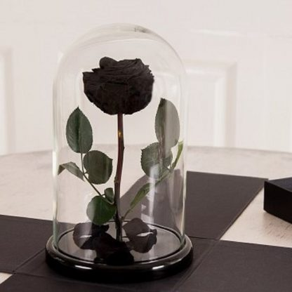 роза в колбе купить киев украина