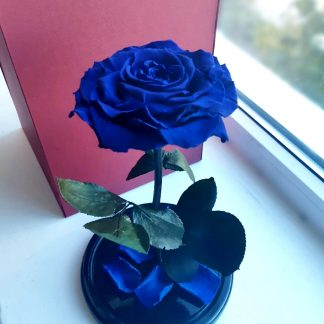 синяя роза в колбе купить киев