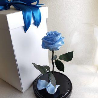 небесно голубая роза в колбе купить киев