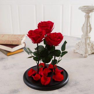 три троянди в колбі купити київ