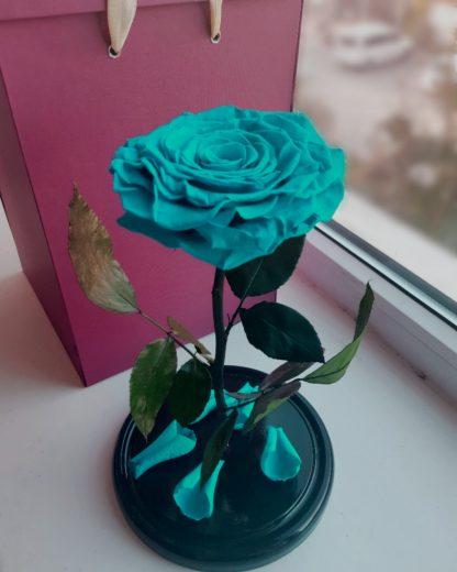 бирюзовая роза в колбе купить киев
