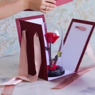 коробка бордовая для розы в колбе