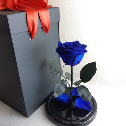 синяя вечная роза в колбе подарок на день рождения