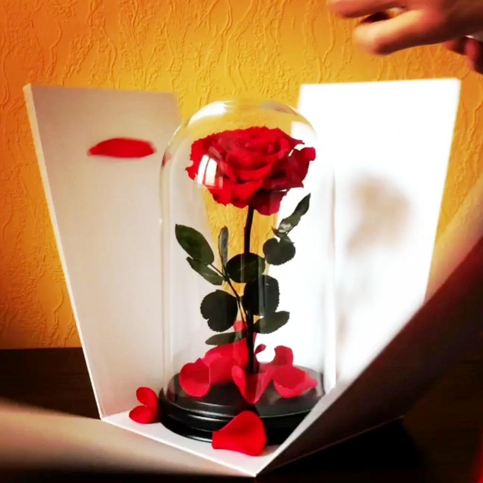 троянда у колбі купити