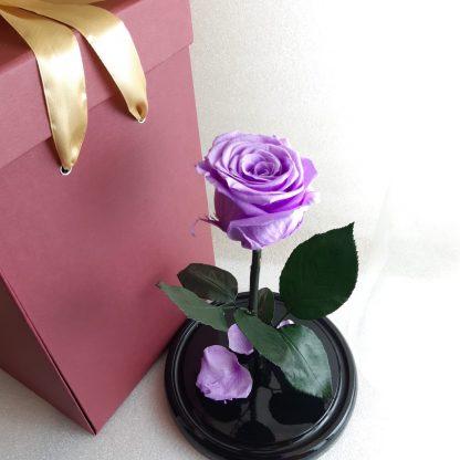 сиреневая роза в колбе купить киев