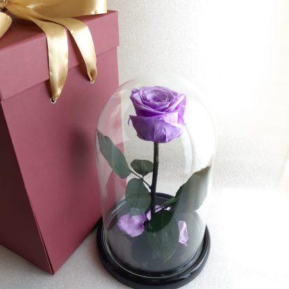 фіолетова троянда у колбі купити київ