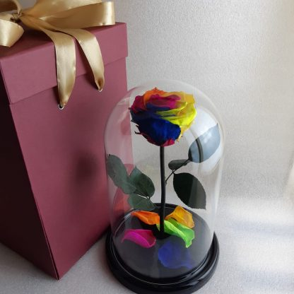 разноцветная роза в колбе купить киев