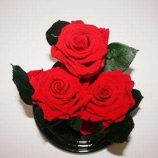 троянда у колбі купити київ