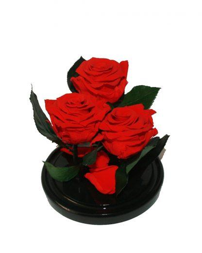 красная роза в колбе купить киев