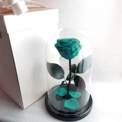 вечная роза в колбе бирюзовая купить