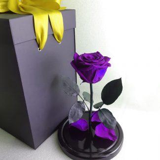 подарок роза в колбе