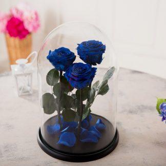 доставка квітів Київ букет синих роз