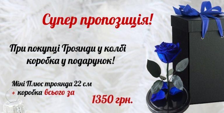купить розу в колбе в киеве