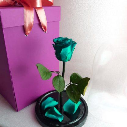вечная бирюзовая роза в колбе